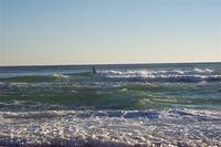 Gulf of Mexico + Surfer