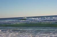 Gulf of Mexico + Surfers